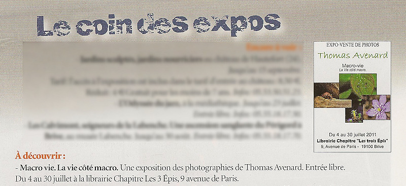 brive article journal expo thomas avenard photo
