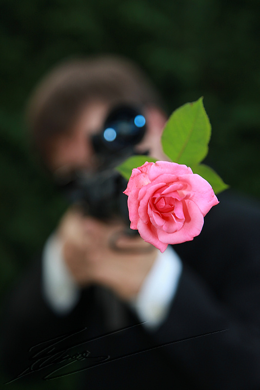 nico horatio caine experts miami james bond costard m14 sniper lunette visée tir rose canon fusils