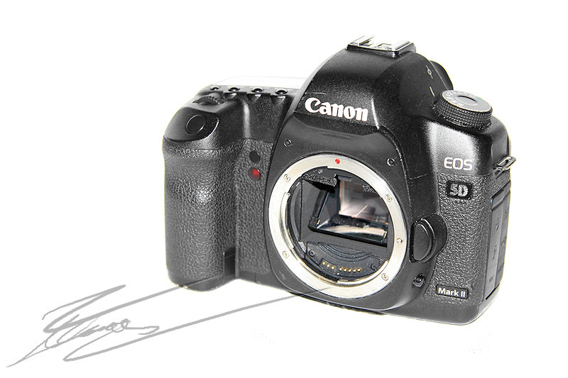 Canon EOS 5d mark II 5DII 2 review test photo porn porno camera body boitier nu