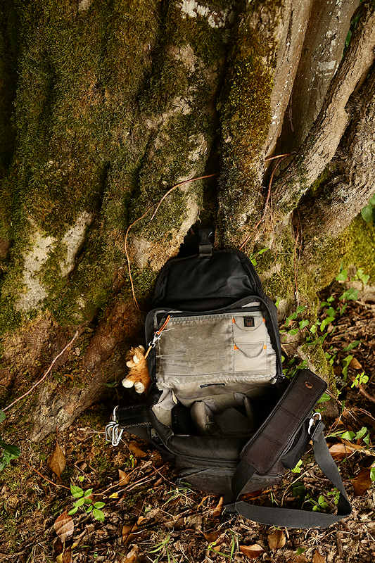 Lowepro review test photo porn porno camera bag sac sacoche appareil photo Lowepro nova 180 AW noir black forêt forest arbre tree ouverte open intérieur in into dedans