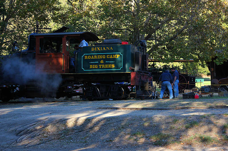 reportage 2013 usa USA Amérique america murika US californie santa cruz Henry Cowell Redwood State Park parc séquoïas arbres trees géants giants bois wood Roaring Camp and Big Trees railroad chemin de fer forestier machine à vapeur locomotive train steam machine