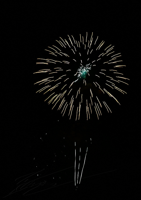 reportage 2015 france corrèze malemort sur corrèze brive la gaillarde feux d'artifices fire work firework fête nationale fest festival défilé walkthrough walk 14 juillet july the 14th 1789 fleurs flowers